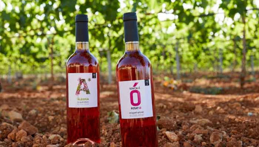 miquel-oliver-vinyas-tira1